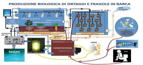 lo schema del processo che garantisce a Matteo Miceli la sostenibilità alimentare