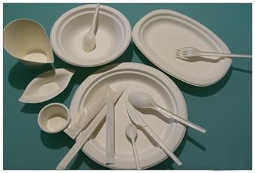piatti e posate compostabili che possono essere inserite direttamente nel bidone dell'organico. Questo può ulteriormente facilitare le operazioni di pulizia dei tavoli durante gli eventi
